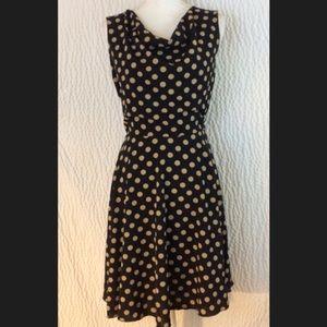 Draped Polka Dot Fit Flare Dress 14